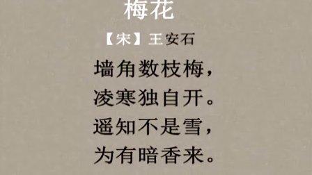分级阅读第五级古诗——梅花