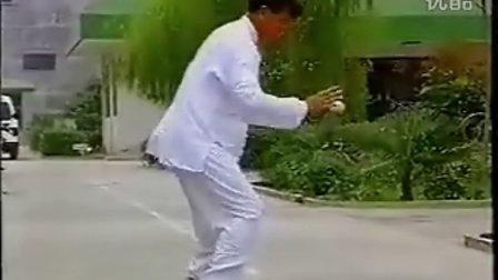 【侯韧杰  TaiJi  大师篇】之小架掌门陈伯祥