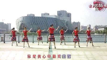 青儿广场舞 雪莲花(含背面演示)