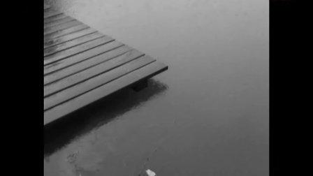 2011年6月14日万里水灾特别报道
