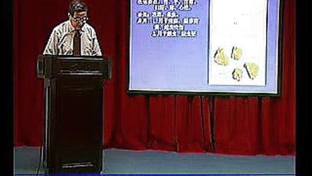 第七十八讲《中药学》攻毒杀虫去腐敛疮药概述集药:雄黄、硫磺、白矾、蛇床子、升药_标清
