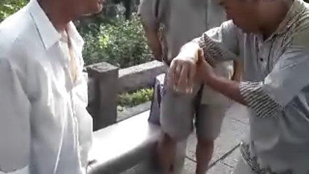 洪式太极拳李储功老师