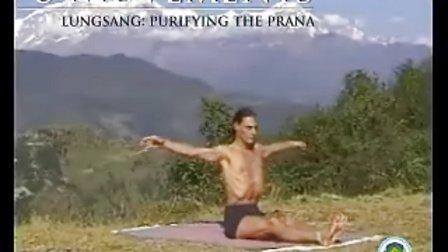 幻轮瑜伽简介视频