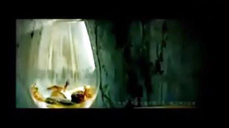 陈艺鹏-老鼠不再爱大米