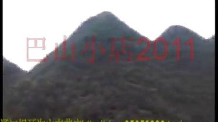 巴山小店2011 通江银耳宣传片