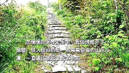 优酷网-黄金格作文(小学版)小学作文06