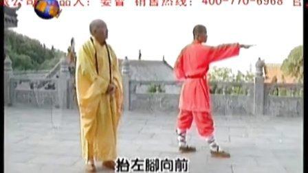 少林黑虎拳.wmv