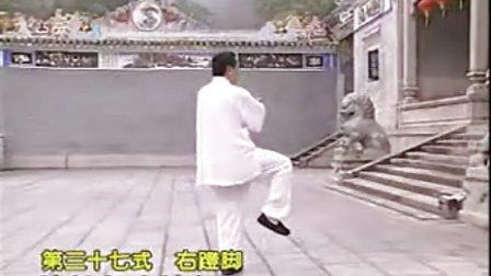 赵幼斌杨式太极拳85式
