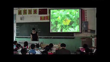 四年级下册《生命生命》乌江小学罗秀英新课标小学语文优质课展示