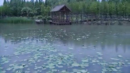 昆山市城市生态森林公园