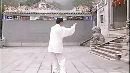 杨式太极拳85式-赵幼斌