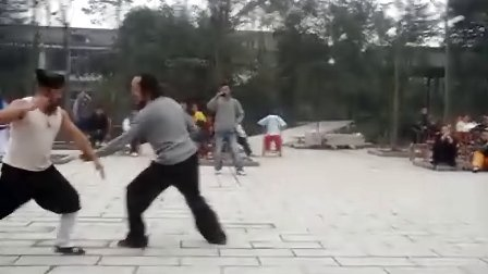 珍贵视频:实拍青城派两大掌门人切磋武术(何道君 刘绥滨)