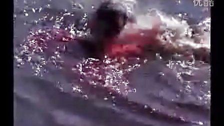 美洲豹被鳄鱼杀死 活活撕裂
