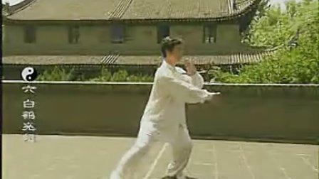 85式杨式传统太极拳1-14式 分解教学 惠合同 标清