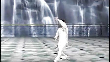 陈思坦-42式太极拳(整套演练)(流畅) 标清