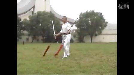 张世玉演练百翎双剑