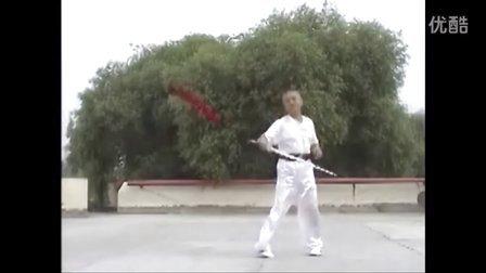 张世玉演练丹凤剑