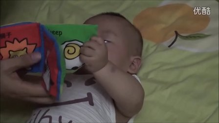 豆豆爱看书