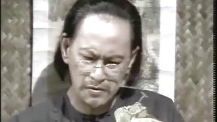 大地恩情家在珠江28 国语DVD