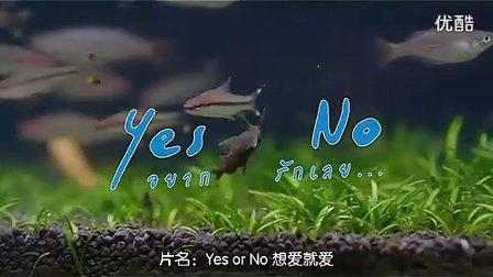 【泰国电影】《yes or no(想爱就爱)》泰语中字.flv