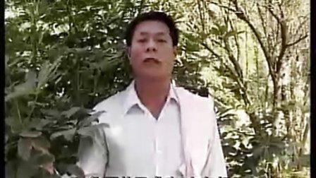 中山咸水歌·咸水歌对唱·什锦歌3