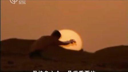 【米粒娱乐网】纪录片 荒野求生 生存在撒哈拉大沙漠中 国语 高清 中文字幕