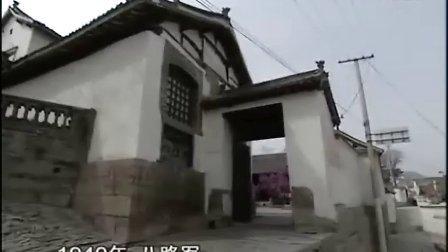 《中国将帅》邓小平(上)