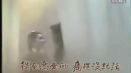 [水富]经典武侠电视剧《日月神剑》主题曲(真真假假)