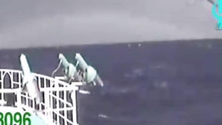 远洋捕捞鲔延绳作业 高清