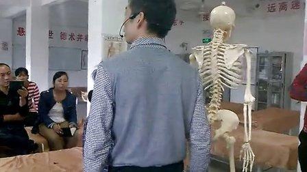 椎体定位解剖学(二) 闽医堂针灸推拿培训学校杨忠锋医师主讲