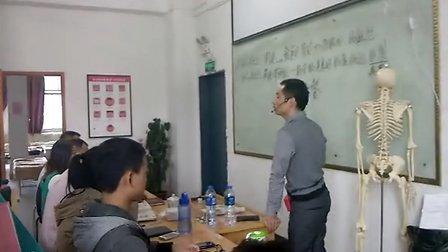 消化系统解剖与疾病关系(二)闽医堂针灸推拿培训学校杨忠锋主讲