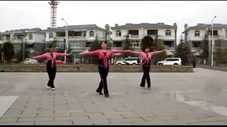 广场舞--河岸好姑娘