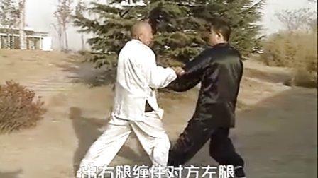 汤瓶七式拳实战教学(时振刚时晓武)A七式散手