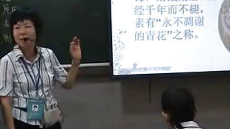 41中陈婉珊《明清经济的发展与闭关锁国》课堂录像