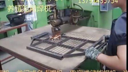 山东排焊机  青岛排焊机