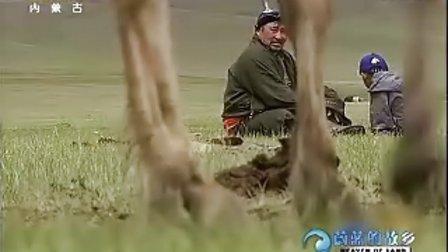 印象蒙古(三) 马背摇篮(上)