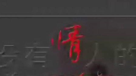 2月3日晚黑狐时尚音画课录