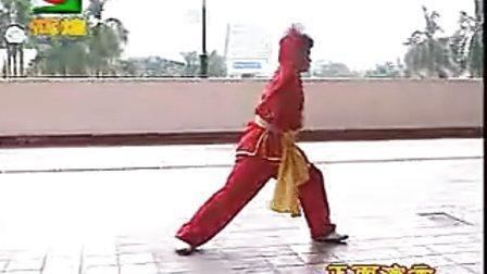 侠家小罗汉拳教学