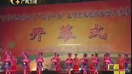 忻城县举办土司文化旅游节活动   110507  广西新闻