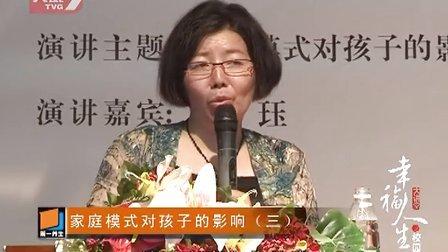 2013幸福人生大讲堂《家庭模式对孩子的影响》(下)陈珏