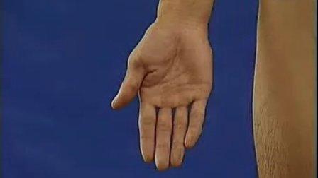 卫生部医学视听教材-断层解剖学-DC009 四肢断层解剖