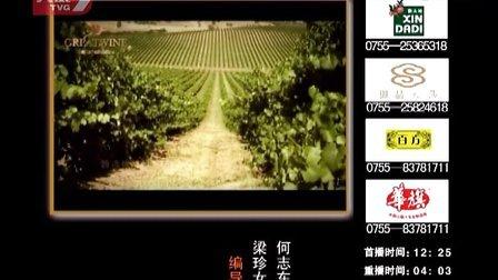 2013幸福人生大讲堂《培养灵通少年的家庭教育艺术》(下)蒋平