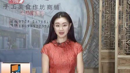 2013幸福人生大讲堂《家长辅导功课的心理策略》(上)田春利