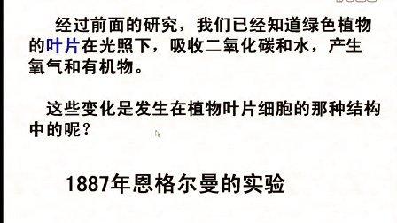 汉水丑生  高中生物 必修一 光合作用(一)