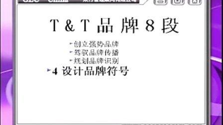王汉武—塑造强势品牌---品牌执行力八段-第四集创造品牌无形资产