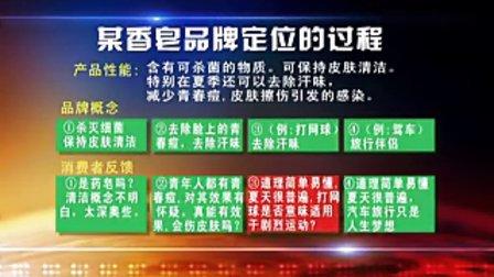 王汉武—精准制导品牌运作系列第4部:精准市场定位-第五集品牌定位之实用策略