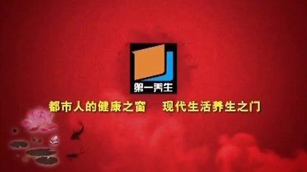 2013幸福人生大讲堂《我不是笨小孩》(上)文飞球