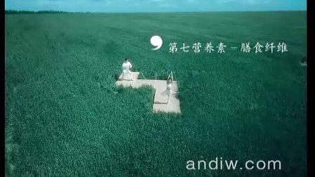 北京影视广告公司 北京影视公司 影视广告制作公司 大麦茶