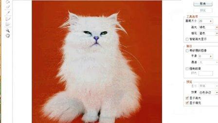 (ps抠图)网络流传的图片【蓝背景的白色小猫】原创作品,分享给大家!