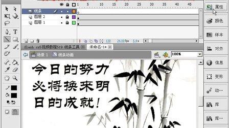 flash cs5视频教程519 线条工具